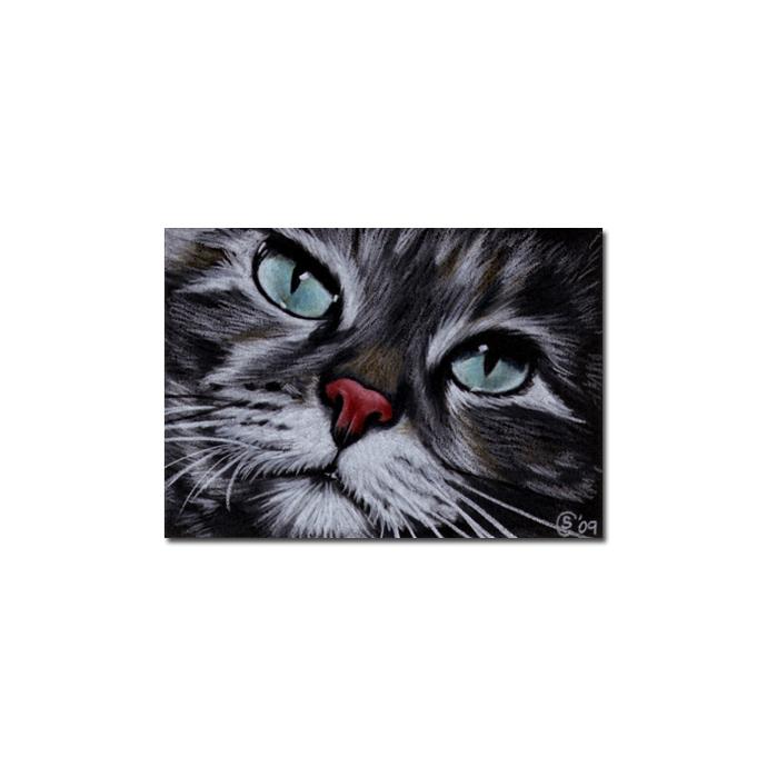 Tabby 44 CAT grey ginger orange tiger kitty kitten drawing painting Sandrine
