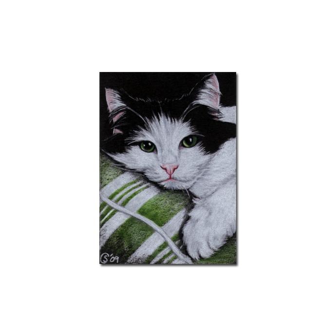 TUXEDO Holly 4 CAT kitten Black Halloween drawing painting Sandrine Curtiss Art