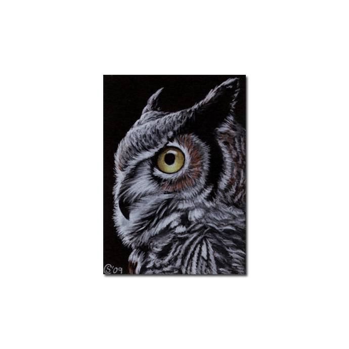 OWL 2 portrait raptor bird pencil painting Sandrine Curtiss Art Limited Edition