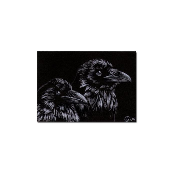 RAVEN 97 crow black bird Halloween colored pencil drawing painting Sandrine