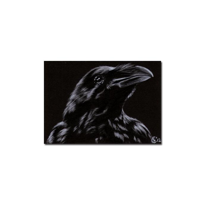RAVEN 186 crow black bird Halloween colored pencil drawing painting Sandrine