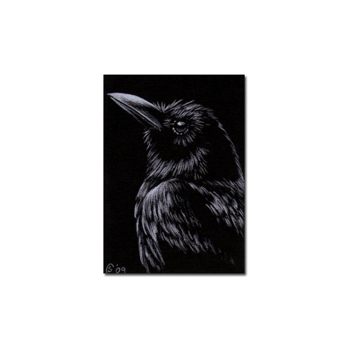 RAVEN 90 crow black bird Halloween colored pencil drawing painting Sandrine