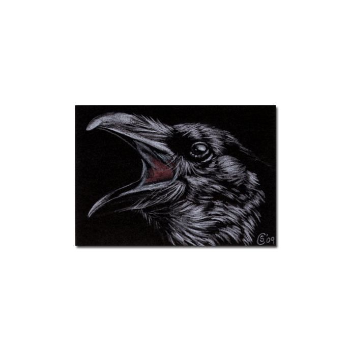 RAVEN 102 crow black bird Halloween colored pencil drawing painting Sandrine