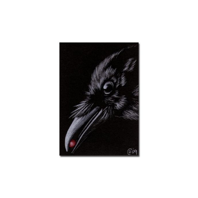 RAVEN 110 crow black bird Halloween colored pencil drawing painting Sandrine