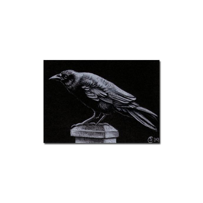 RAVEN 69 crow black bird Halloween colored pencil drawing painting Sandrine