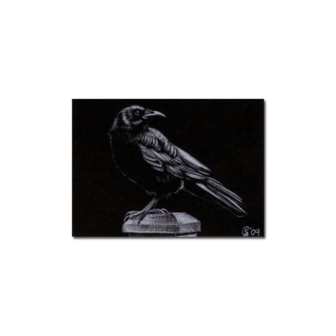 RAVEN 68 crow black bird Halloween colored pencil drawing painting Sandrine