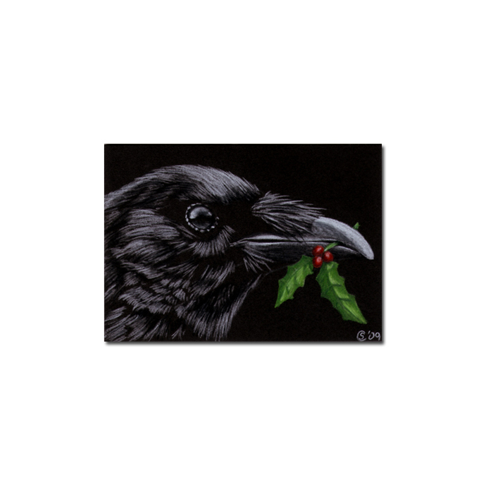 RAVEN 111 crow black bird Halloween colored pencil drawing painting Sandrine