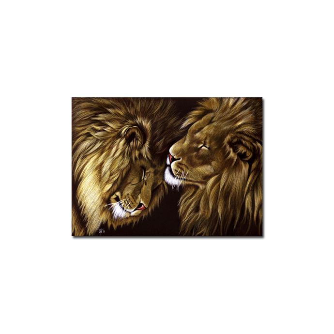 LIONS portrait big cat feline pencil painting Sandrine Curtiss Art Limited