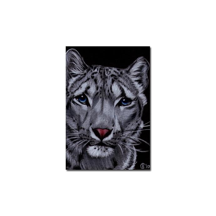 SNOW LEOPARD 9 portrait big cat animal feline pencil painting Sandrine Curtiss
