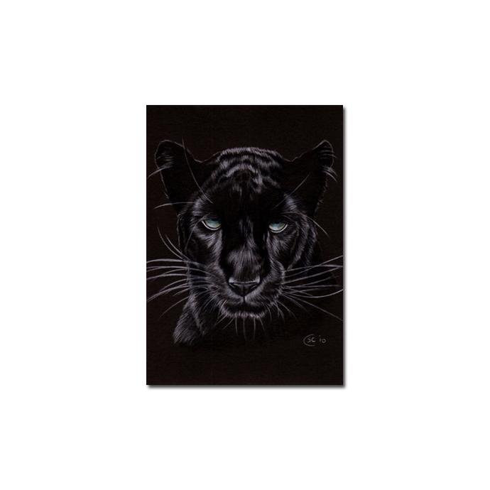 BLACK PANTHER 14 big cat animal feline pencil painting Sandrine Curtiss Art