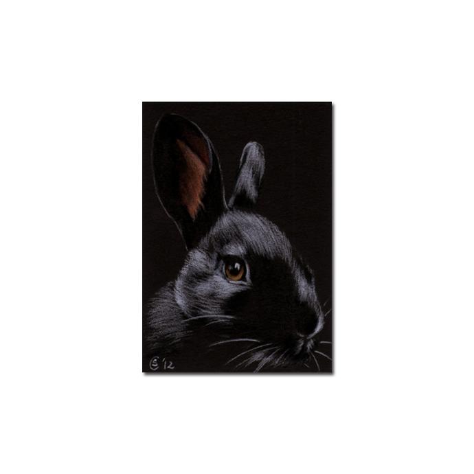 BUNNY 99 rabbit black dutch Easter pet pencil painting Sandrine Curtiss Art
