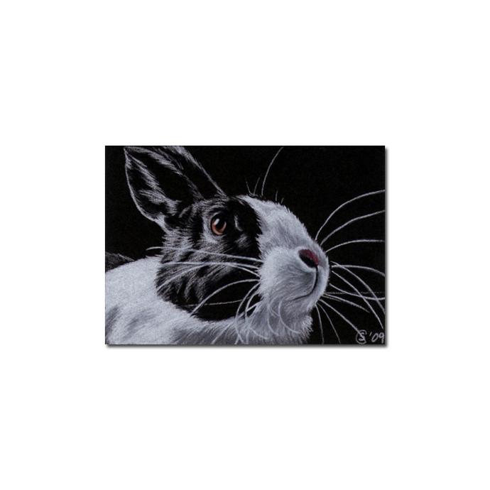 BUNNY 49 rabbit black dutch Easter pet pencil painting Sandrine Curtiss Art