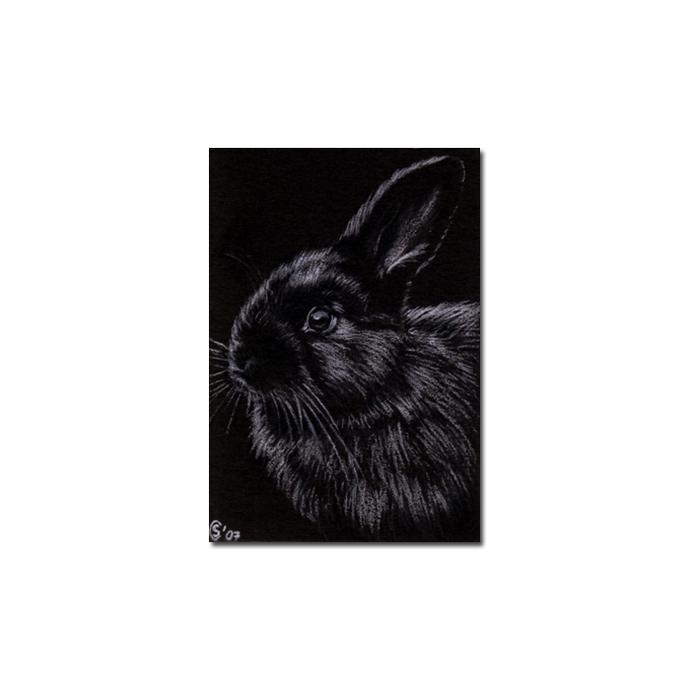 BUNNY 7 rabbit black dutch Easter pet pencil painting Sandrine Curtiss Art