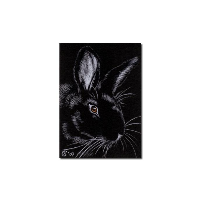 BUNNY 20 rabbit black dutch Easter pet pencil painting Sandrine Curtiss Art