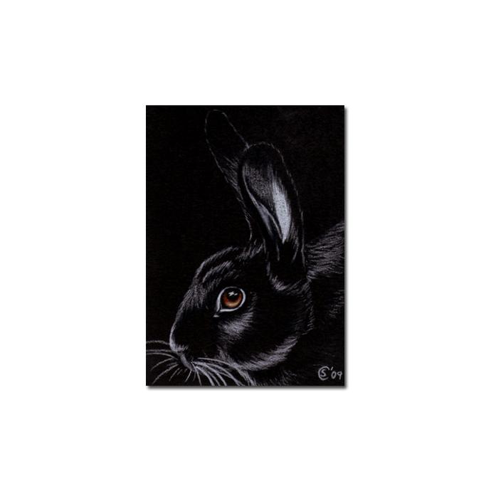 BUNNY 47 rabbit black dutch Easter pet pencil painting Sandrine Curtiss Art