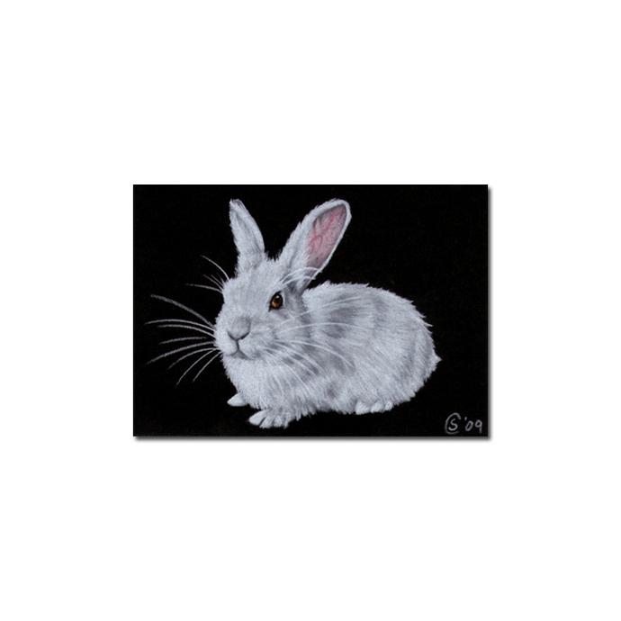 BUNNY 54 rabbit black dutch Easter pet pencil painting Sandrine Curtiss Art