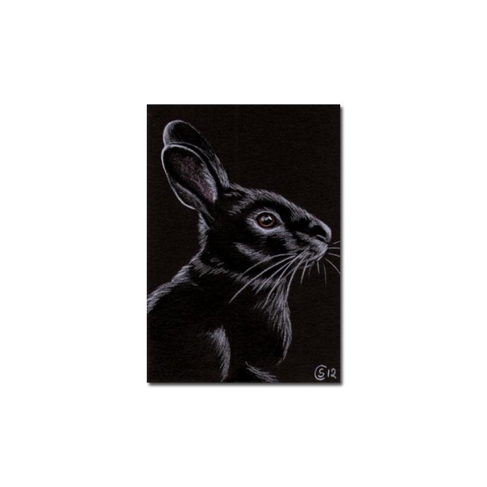 BUNNY 87 rabbit black dutch Easter pet pencil painting Sandrine Curtiss Art