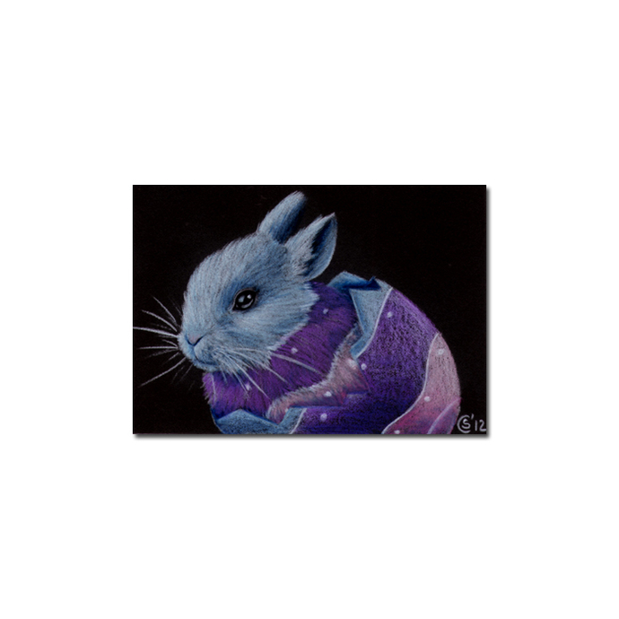 BUNNY 88 rabbit black dutch Easter pet pencil painting Sandrine Curtiss Art