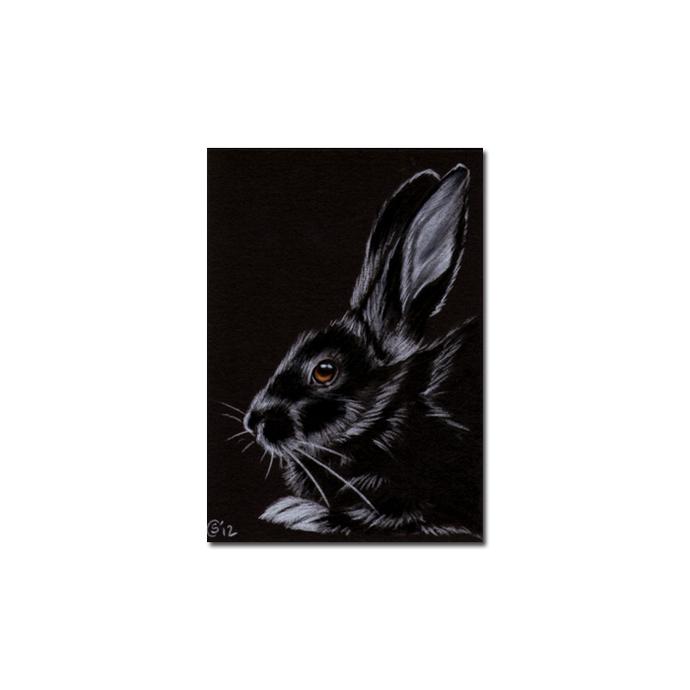 BUNNY 89 rabbit black dutch Easter pet pencil painting Sandrine Curtiss Art