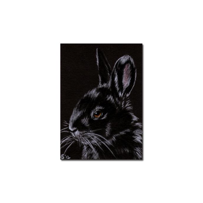 BUNNY 92 rabbit black dutch Easter pet pencil painting Sandrine Curtiss Art