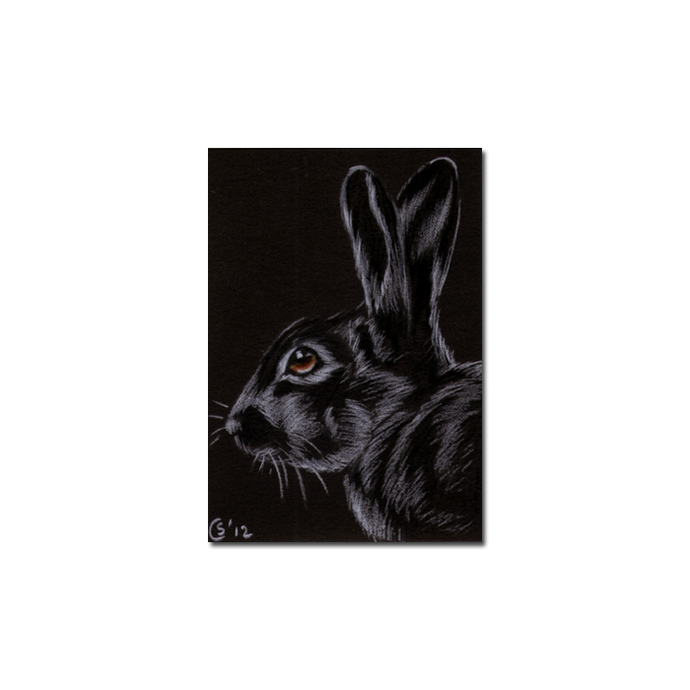 BUNNY 100 rabbit black dutch Easter pet pencil painting Sandrine Curtiss Art