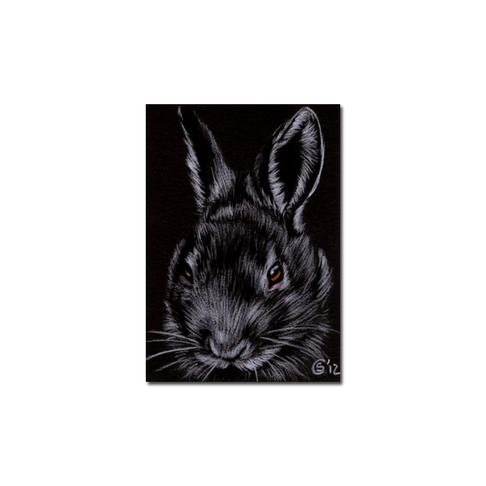 BUNNY 101 rabbit black dutch Easter pet pencil painting Sandrine Curtiss Art