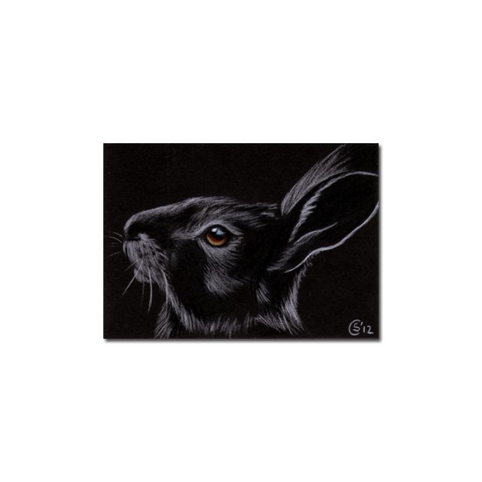 BUNNY 104 rabbit black dutch Easter pet pencil painting Sandrine Curtiss Art