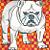 Bull Dog 2- matted print
