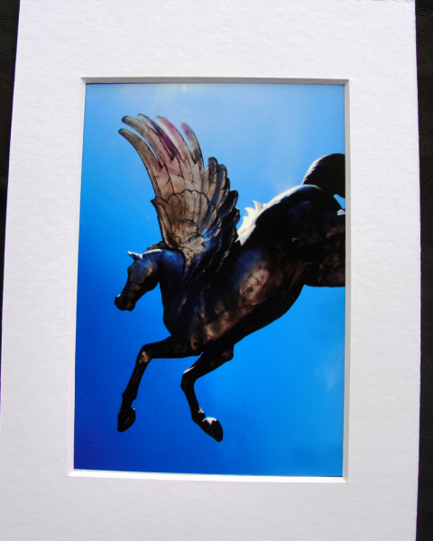 Flying Horses photographic art print