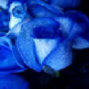 Profile momentsofbeauty1313731308