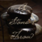 Profile astonesthrowhandbags335282090