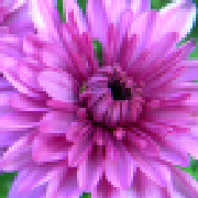 Profile unexpectedtreasure2681683710