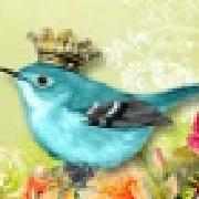 Profile paperandstones464215999
