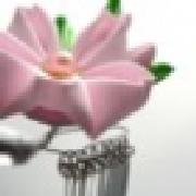 Profile mizusugi1284566189