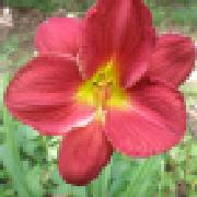 Profile lucysbeadstudio1907192437