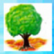 Profile designsbybaerreis48729679