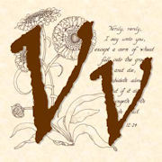 Profile vintage verses for zibbett icon